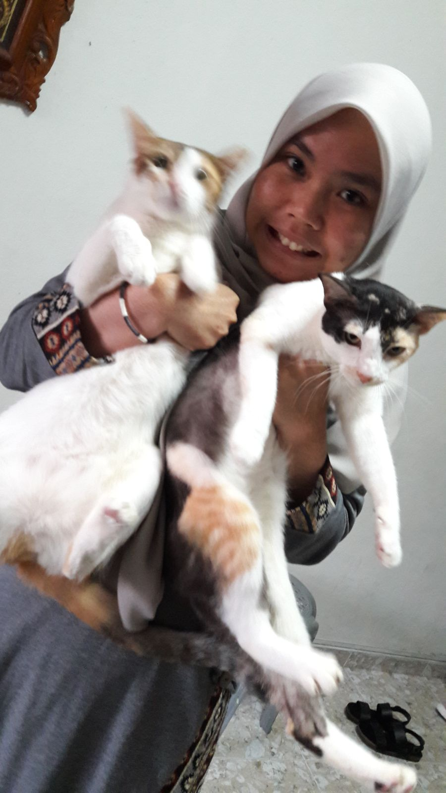 Rishah and cats.jpeg